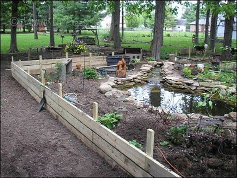 backyard turtle habitat box turtle habitats indiana turtle care favorite