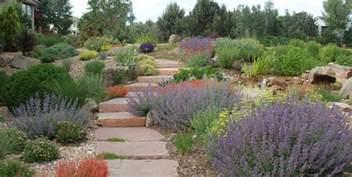 Backyard Landscape Design Templates xeriscaping ideas landscaping network