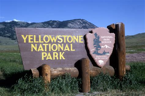 google images yellowstone national park yellowstone national park usa feel the planet