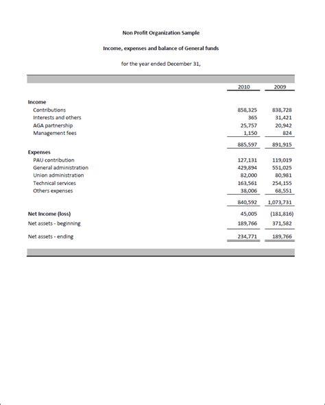 Non Profit Financial Statement Template Excel Templates Data Non Profit Financial Report Template