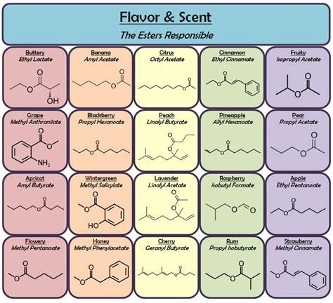 scientifically elucidate the cause of the unique smell les 11 meilleures images du tableau the five senses sur