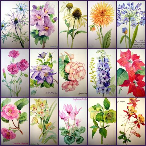 tutorial watercolor flowers the watercolor flower painter s a to z by adelene fletcher