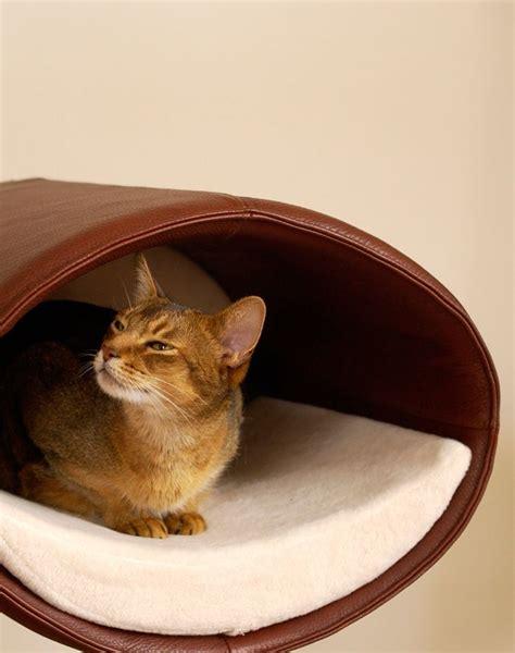 modern cat modern cat scratcher rondo wall a unique cat tree and cat