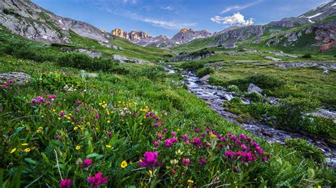 spring meadow wallpaper  images