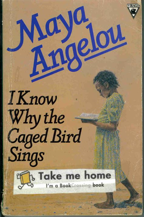 caged books i why the caged bird sings by angelou rafferty