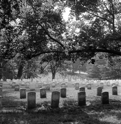 Section 27 Arlington National Cemetery by Arlington National Cemetery A Stirring Song Sung Heroic