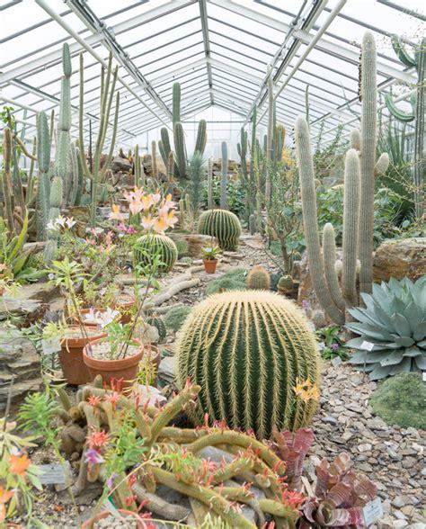 Munich Botanical Gardens Joelix Botanical Garden In Munich