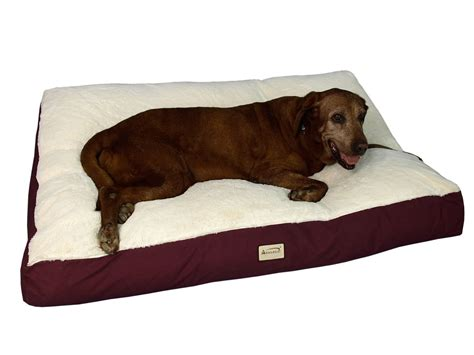dog couches for large dogs dog beds large dogs