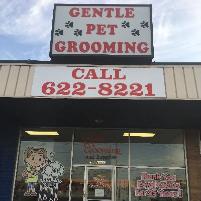 grooming tulsa the 10 best groomers in tulsa ok 2018 free quotes