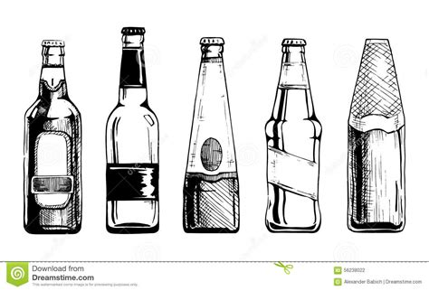 beer vector beer bottle drawing www pixshark com images galleries