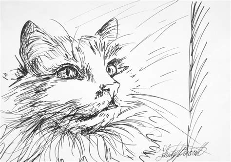 Sketches With Pen by Felicity Deverell Ink Pen Sketches 41 44