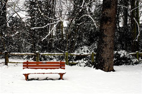 bench in snow park bench covered in snow flickr photo sharing