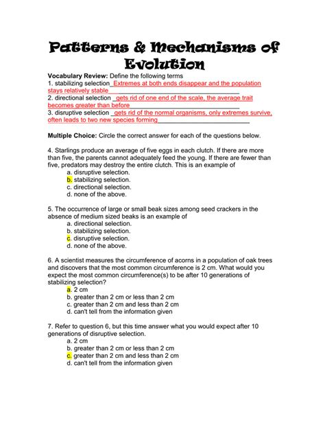 section 17 4 patterns of evolution worksheet patterns of evolution worksheet
