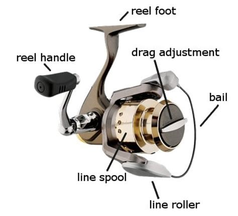 fishing reel parts diagram parts of spinning reel with diagram