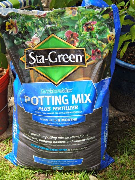 How To Plant A Vegetable Container Garden This Ole Mom Best Soil Mix For Container Vegetable Garden