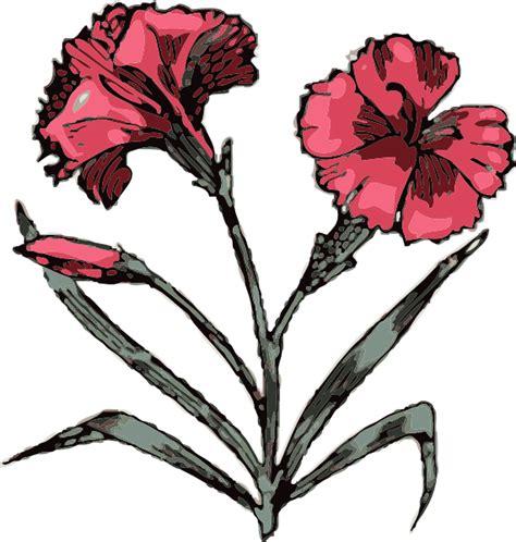 Carnation Clipart carnation clip at clker vector clip
