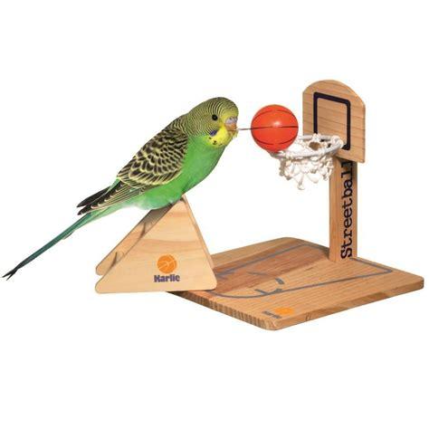 bilder teichen 3092 streetball vogelspielplatz intelligenzspielzeug