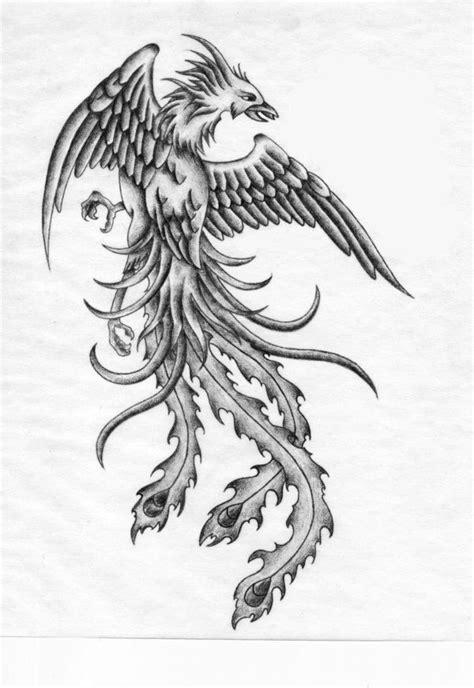 phoenix tattoo removal loughborough 54 best phoenix collection images on pinterest phoenix