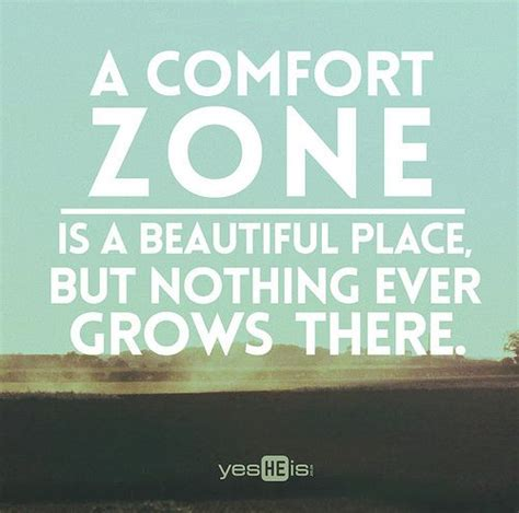 comfort zone lyrics a comfort zone is a beautiful place but nothing ever grows
