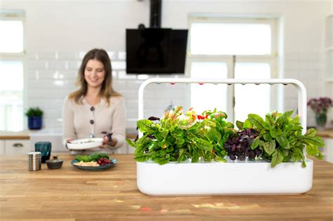 the smart garden click and grow the smart garden freshersmag