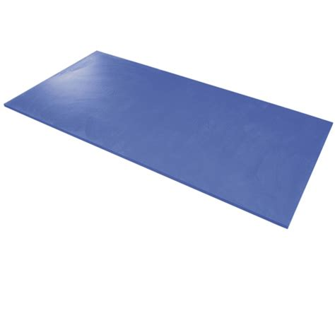 Therapeutic Mat by Airex Hercules Exercise Therapy Mat Physical Therapy Mat