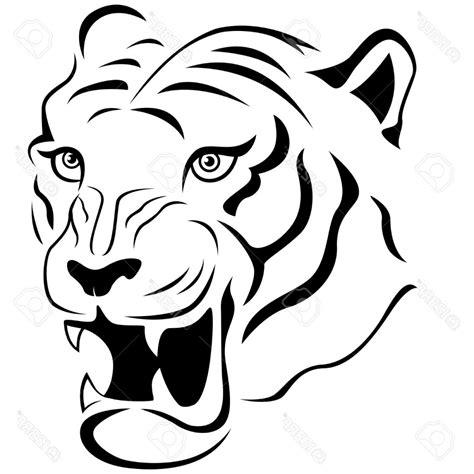 Tiger Outline Outline Drawing For
