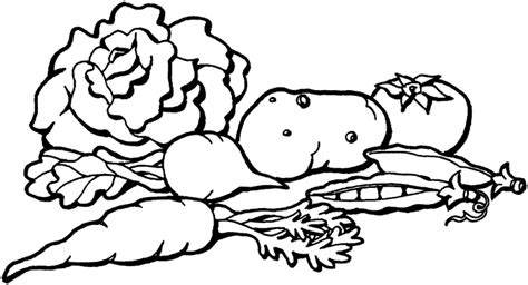 coloring pages of garden vegetables vegetables coloring pictures clipart panda free