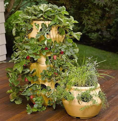 Herb Planter by Stackable Strawberry And Herb Planters The Green