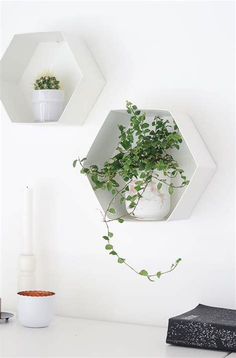 Wall Plant Shelf by 25 Best Ideas About Hexagon Shelves On