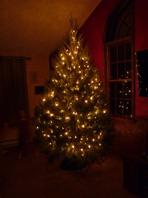 christmas tree gift advertising promotion led touches the