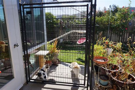 Sliding Screen Door With Dog Door Built In I Designed And Built My Dream Catio And You Can Too