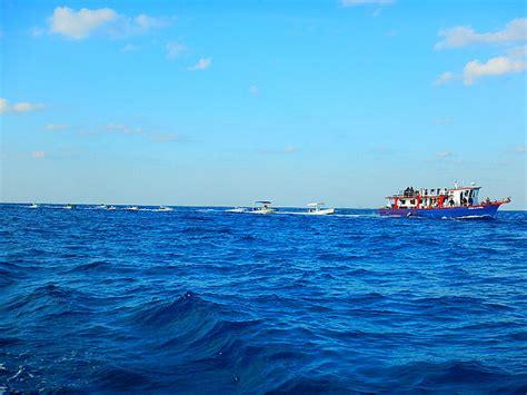 fishing boat bimini leaving bimini with the fishing boats photo