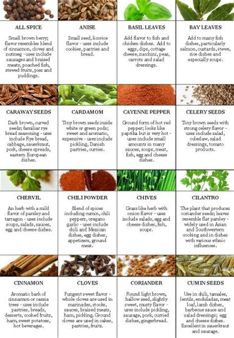 List Of Detoxing Herbs by List Of All Herbs Made A List Of All The Significant
