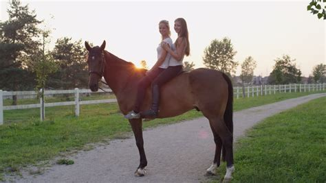 commercial girl riding horse gelding stock footage video shutterstock