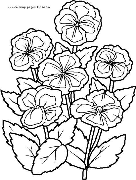 violets color page