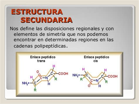 define cadena polipeptidica prote 237 nas resumen