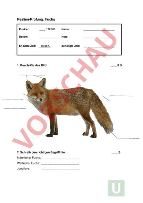 überwachungskamera für tiere www unterrichtsmaterial ch biologie tiere pr 195 188 fung