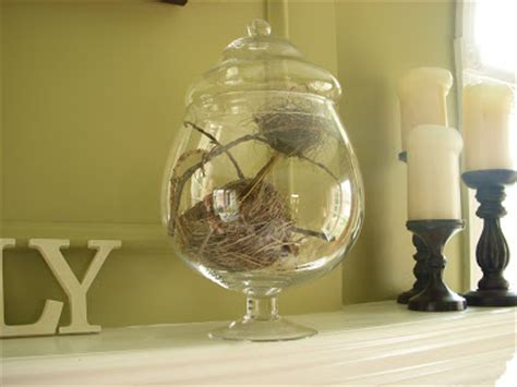 studios bird s nest home decor