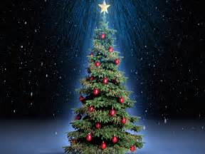christmas trees images full desktop backgrounds