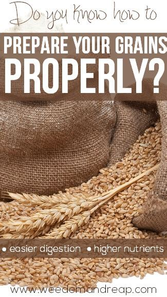 whole grains difficult to digest do you how to prepare your grains properly