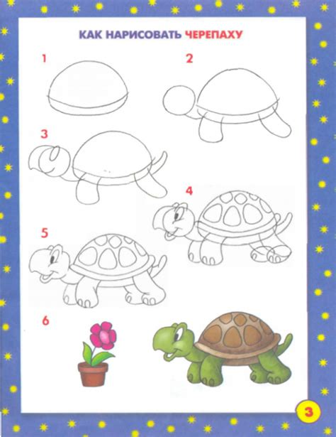 Drawing Lessons by Basic Drawing Lessons For Www Pixshark Images