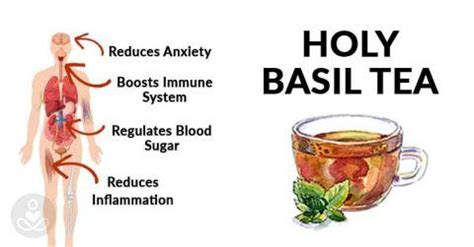 Holy Detox Tea Benefits by 48 Best Images About Detox Gut Health On