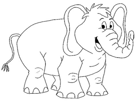 coloring page for elephant elephants coloring pages realistic realistic coloring pages