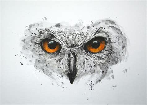 owl mixed media by aaron de la haye