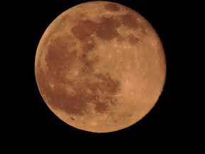 what is a strawberry moon photos of the strawberry moon wptv com