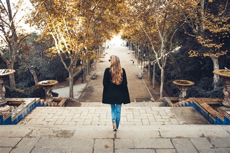 i everyone an introvert s miserable adventures with mailmen children chocolate the outdoors and the human condition books 5 tips for introverts who are planning to study abroad