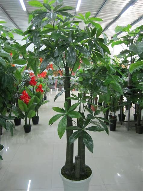 Artificial Plants For Living Room | large high artificial pachira fake tree artificial flower