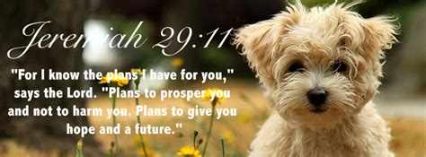 bible verses about dogs bible quotes for dogs quotesgram