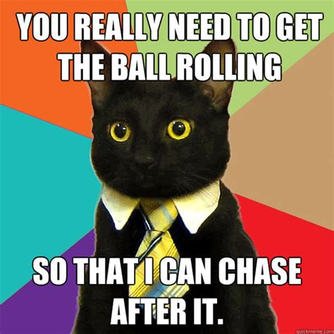 Business Cat Meme - business cat the awesomer