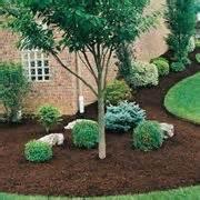 pacciamatura giardino pacciamatura orto domande e risposte orto e frutta